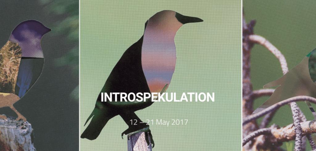 Introspekulation