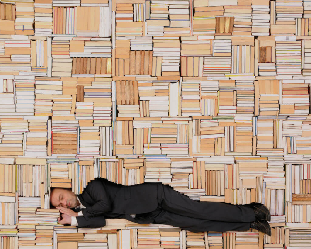 Susanna Hesselberg, Sleeping Librarian, 2017