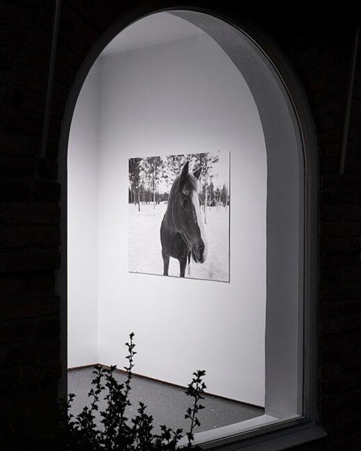 charlie_fjatstrom-installation-vaslisouza2