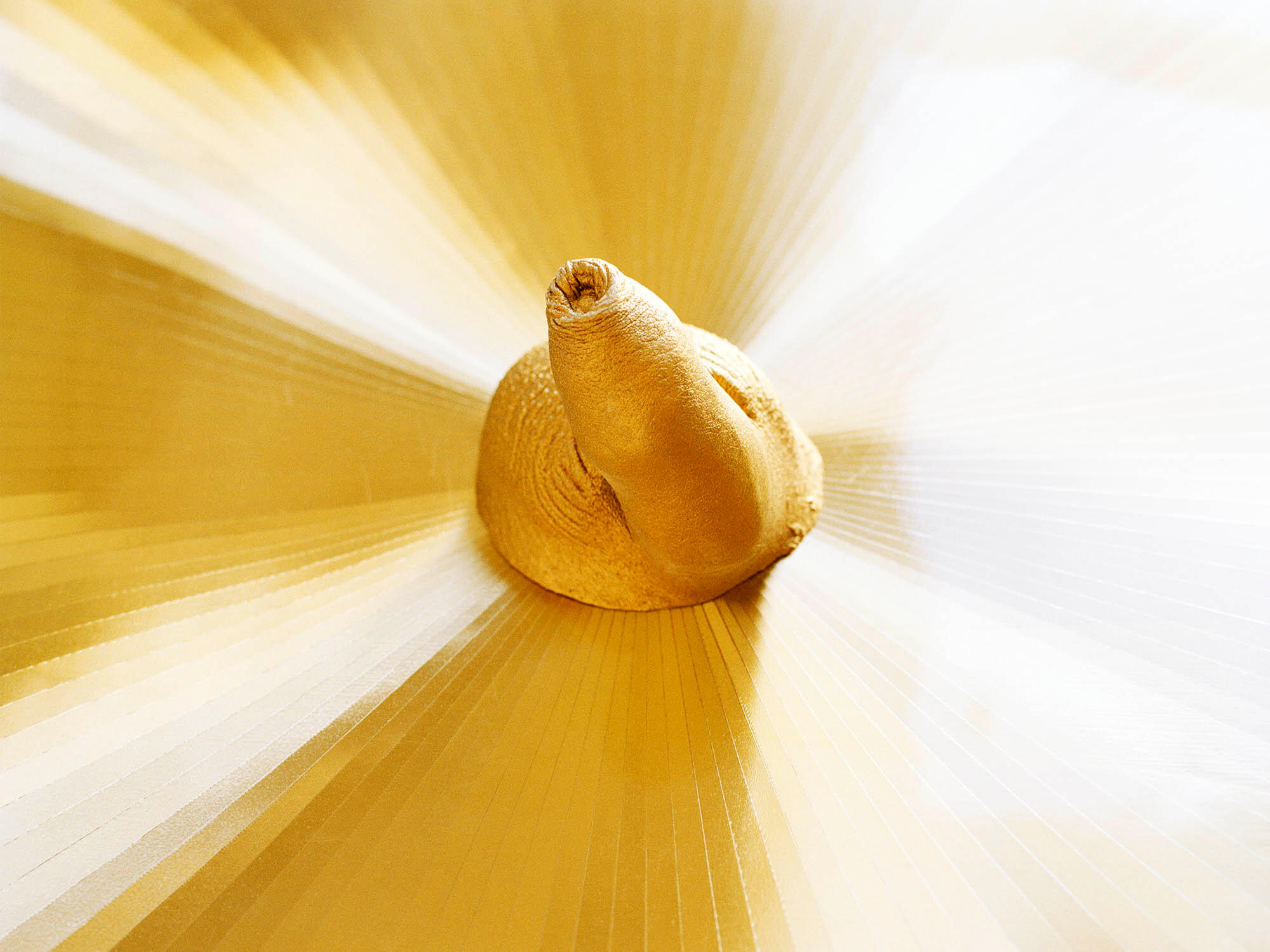50x375_liao_gold